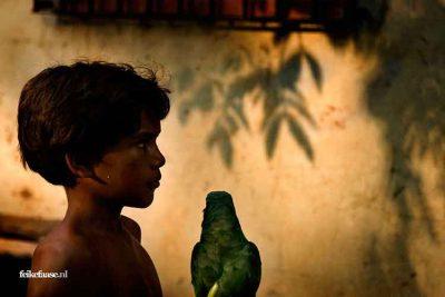 Reisfotografie: Silhouette van kind die papegaai vasthoudt; foto door fotograaf Feike Faase